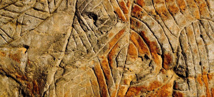 tour-aboriginalmelbourne1